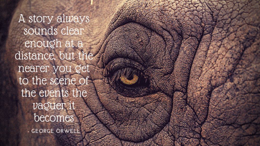 Close up image of an elephant's eye with a George Orwell quote